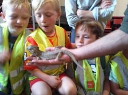 Lads with Lizard