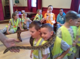 Mates with the snake