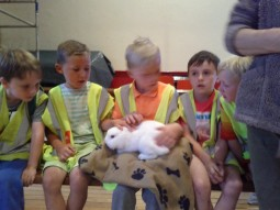 Rabbit With Lads