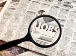 CE Scheme Jobs