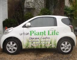 urban plant life dublin